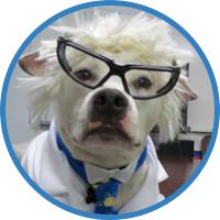 Professor Baxter BFM Expert